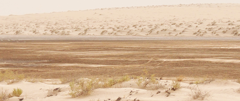 Trockenes Wüstenklima in Katar