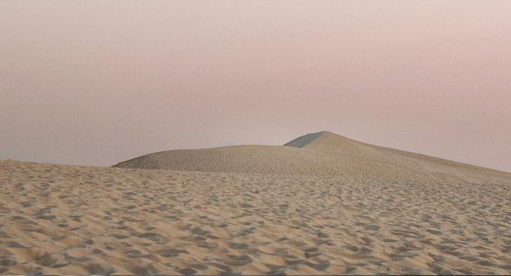 Wüstenlandschaft in Katar - Ideal für einen Kurztrip mit Hund